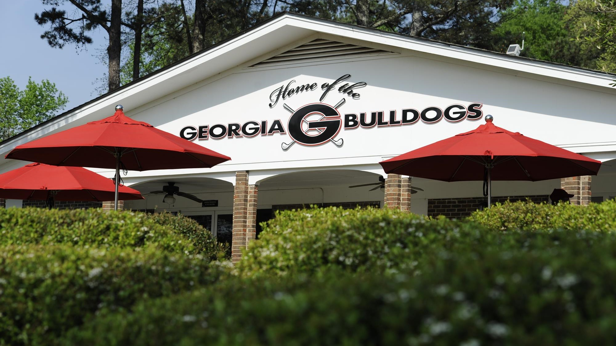 Jones Kahlstorf Phillips Sign With Bulldogs & Jones Kahlstorf Phillips Sign With Bulldogs - University of Georgia